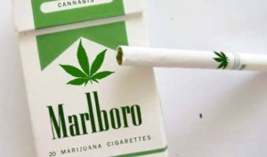Phillip Morris Introduces Marlboro Marijuana Cigarettes, Hoax Article