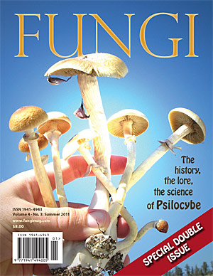 The Genus Psilocybe in North America by Michael W. Beug
